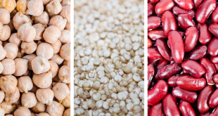 importance of fiber in the diet